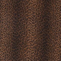 Leopard Africa SA49