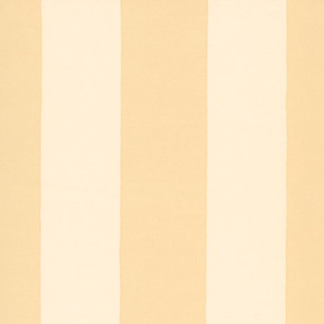 Clifton Stripe SW113