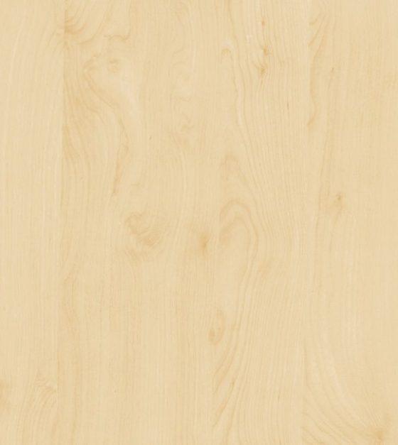Birch SA286