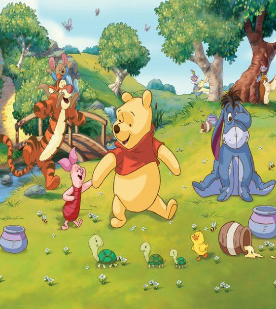 Winnie The Pooh SM77