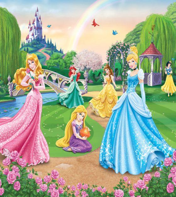 Disney Princess SM86